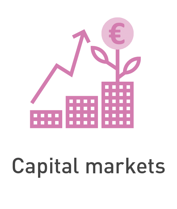 Capital markets [Anixton]