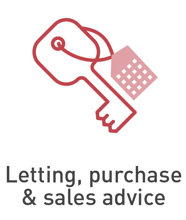Letting, purchase and sales advice [Anixton]