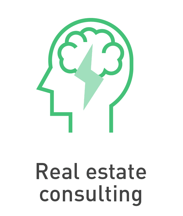 Real estate consulting [Anixton]